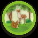 Príroda a zvieratá